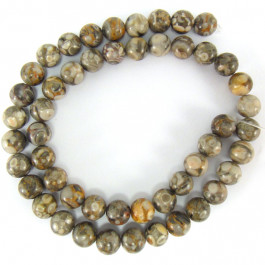 Ocean Fossil 8mm Round Beads