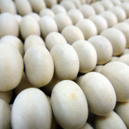Natural White Wood 10x15mm Mentos Wood Beads
