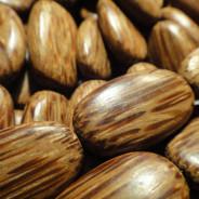 Palmwood Flat Oval Wood Beads