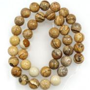 Picture Jasper 10mm Round Beads