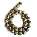 Dalmation Jasper 12mm Faceted Round Beads