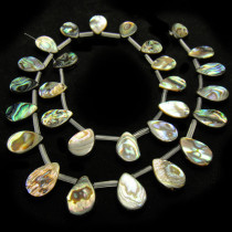 Abalone 10x14mm Drop Beads