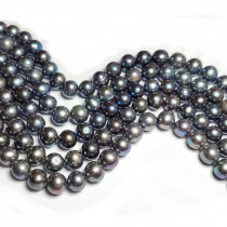 Freshwater Potato Pearl Peacock 8mm Beads